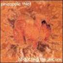 Pineapple Thief:Abducting the Unicorn