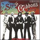 Steve Gibbons Band:Any road up