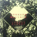 Tornado Wallace: Lonely Planet