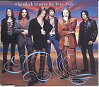 Black Crowes:By your side