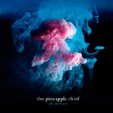 Pineapple Thief:All the Wars