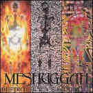 Meshuggah:Destroy Erase Improve