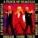 A FLOCK OF SEAGULLS:Dream come true