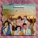 Split Enz: Mental notes