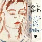sonic youth: bull in the heather