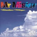 Mr. Mister:Broken Wings