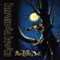 Iron Maiden:fear of the dark
