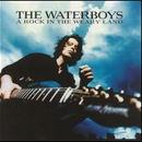Waterboys:A rock in The Weary Land