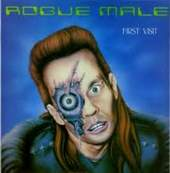 Rogue Male: First Visit