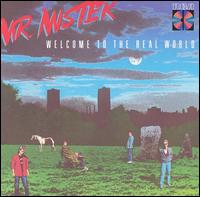 Mr. Mister:welcome to the real world