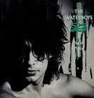 Waterboys: A Pagan Place